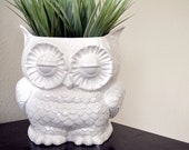 Vintage Retro Decor Custom Ceramic Large Owl Planter Plant Pot ,  White