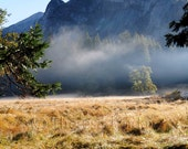 photographic art print Yosemite morning mist mountain clearing thought  the trees