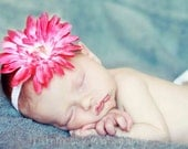 large pink gerber daisy flower elastic headband, infant to adult