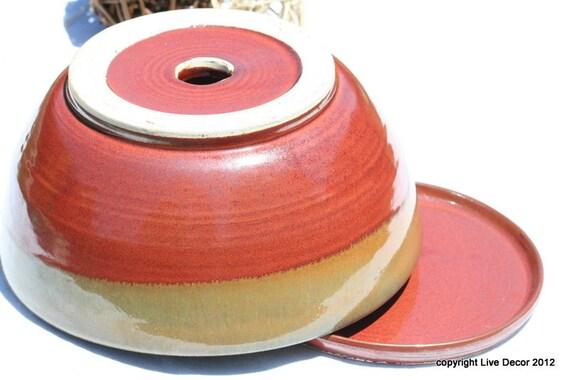 Succulent Planter or Succulent Pot