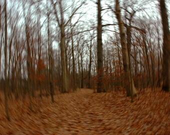 Fall Movement 6