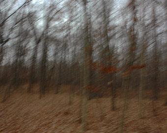 Fall Movement 2