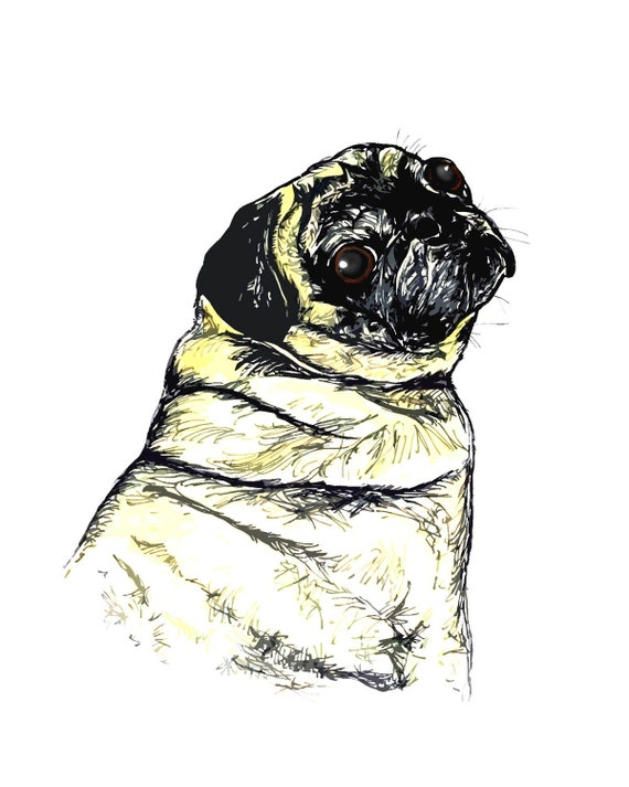 SALE PRICE Fawn Pug Portrait 8.5 X 11 Inches