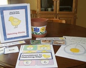 FEATURED ITEM - Life Cycle of a Chicken - Hatching Chicks Learning Centers - DOWNLOAD - Kindergarten/1st Grade / Austim Ready