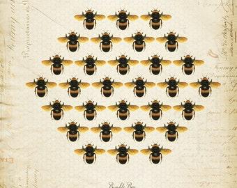 Vintage Bumble Bees Honeycomb on French Ephemera Print 8x10 P53