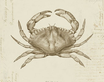 Vintage Red Crab on French Ephemera Print 8x10 P92