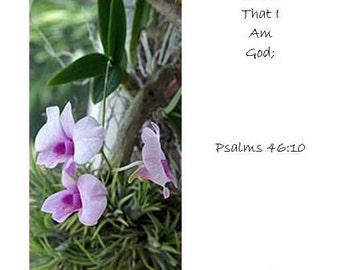 Lavender Orchid Bookmark