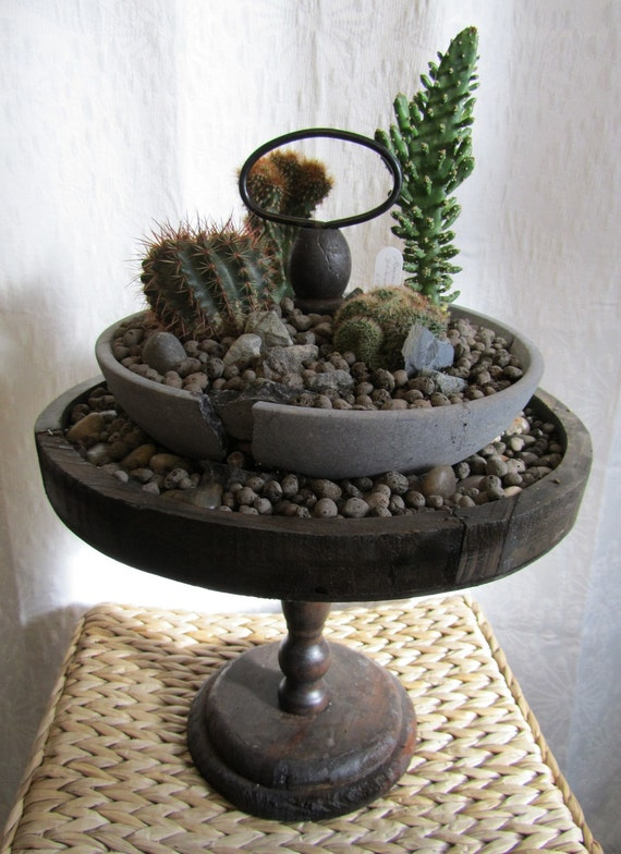 Upcycled Cracked Marble Birdbath Cactus/ Succulent Garden