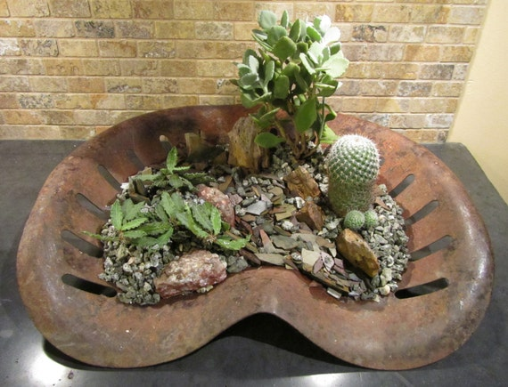 Items similar to vintage metal tractor seat planter cactus for Wooden cactus planter