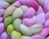 3.5 oz Hand-Painted Polwarth Fiber in 'Electric Sherbert'