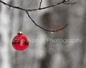 Christmas Star - Fine Art Print - 5x7 matted to 11x14