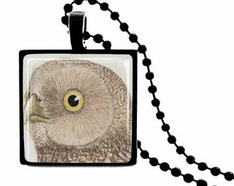 Owl METAL FRAMED Glass Tile Necklace  INCLUDES Chain