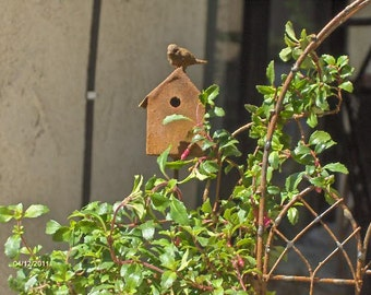 Miniature birdhouse with bird for fairy garden