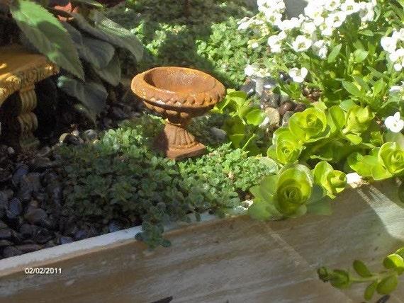 fairy garden urns