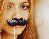 Black Mustache on a Stick - ironic gift idea