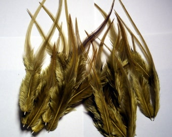 24 rooster saddle hackles dyed olive 3 to 6 inches