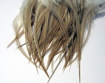 24  taupe feathers rooster saddle 3 to 6 inches natural  K100