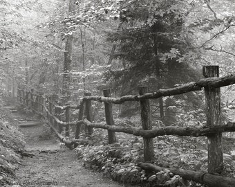 Black and White Photography  / landscape / smoky mountains / Appalachian Trail 12 x 8 print