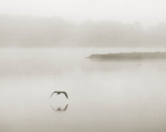 nature photography, minimalist photography, fog photography, landscape photography, sepia, Silence