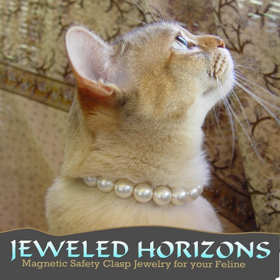 Classy Cat Collar--Pearls for your kitty