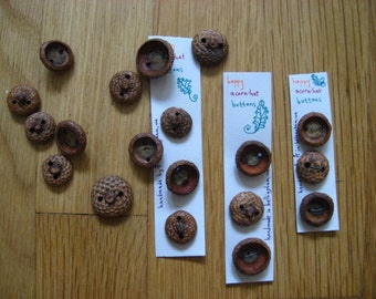 Natural Acorn Hat Buttons (set of 3)