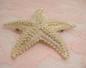 Starfish found in the Sand Beautiful Gold Tipped