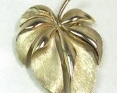 Vintage Gold Leaf Brooch Signed Trifari, Gold Tone Leaf