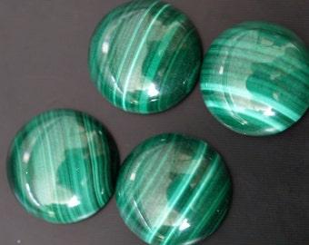 Malachite genuine cabochon 1 pc 14 mm 140CB