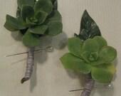 Succulent Boutonnieres -Set of 2