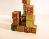 Vintage Children's Wooden Building Blocks (20)