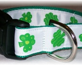 St Pattys Day Lucky Clover Custom Dog Collar Your Choice of Size Small to Xlarge