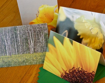 Blank Notecard Set - Four Yellow Flowers - Great Gift