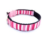 SMALL Pink Stripe Dog Collar