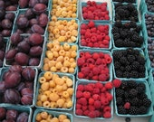 """Farmer's Market in Pennfield, NY - Plums, Yellow and Red Raspberries,Blackberies, Blueberries, Yum  8 1/2"""" by 11"""" Lustre Fine Art Photo"""