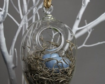 hand blown glass nest hanging terrarium with three glass eggs
