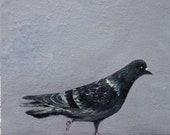 """Pigeon oil painting 12"""" x 10"""""""