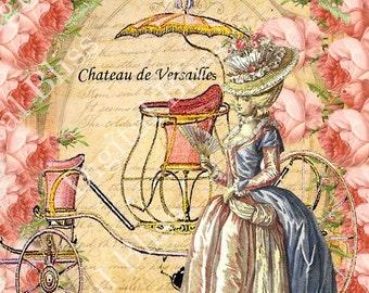 Marie Antoinette Digital Art, Digital Collage Sheet, Roses, Vintage Roses Background, Digital card, Scrapbook Embellishment, Giclee