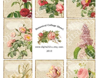 Digital Collage Sheet Botanical Collage Vintage Flowers ATC Scrapbook Embellishment