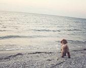 Dog at the Beach, Dog Photography, Blue, Gray, Dog Print, Labradoodle, Beach Art, Seashore Art, Dog Wall Art, Nautical, Labradoodle Art