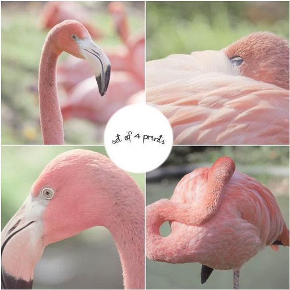Flamingo Print Set, Pink Flamingo Art, Pink Bird Art, Pink Flamingo Photography Set, Flamingo Wall Art, Pink Art, Flamingo Decor