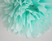 tissue paper pom ... seafoam ... 1 Pom