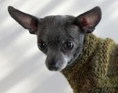 Green Chevron XXX Small Chihuahua or Yorkie Sweater