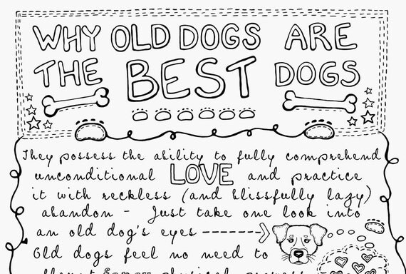Why Old Dogs Are The Best Dogs - 8x10 Gray and Black Dog ART PRINT