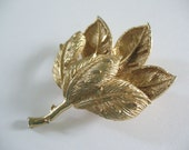 Vintage Gold Two Leaf Brooch Boutineer