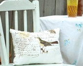 The well-traveled  aviary accent  pillow As featured in Romantic Homes magazine