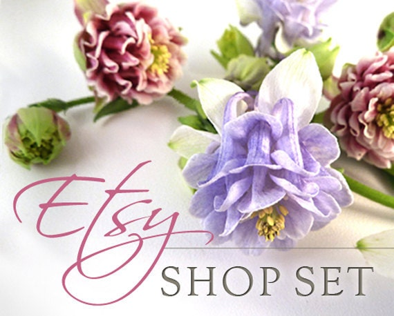 Etsy Shop Set, Banner, Avatar, Listing Graphics, Customizable Premade, Columbine Flowers
