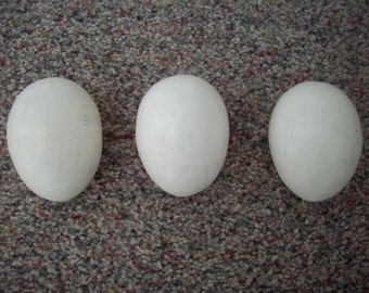 CLEARANCE Three Vintage Wooden Eggs