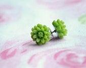 13 COLOR OPTIONS-Dainty Daisy Earrings