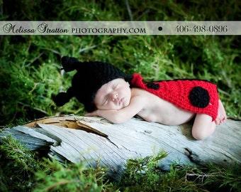 Newborn ladybug cape and hat Newborn photo props photography
