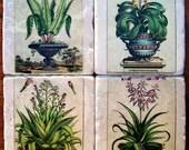 Coasters, Coaster Set, Spring Garden Botanical, 1800's